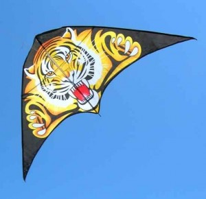 eureka-springs-kite-festival